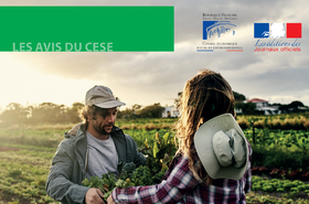 Parution du guide du Conseil Economique Social et Environnemental, pour une alimentation durable dans les territoires